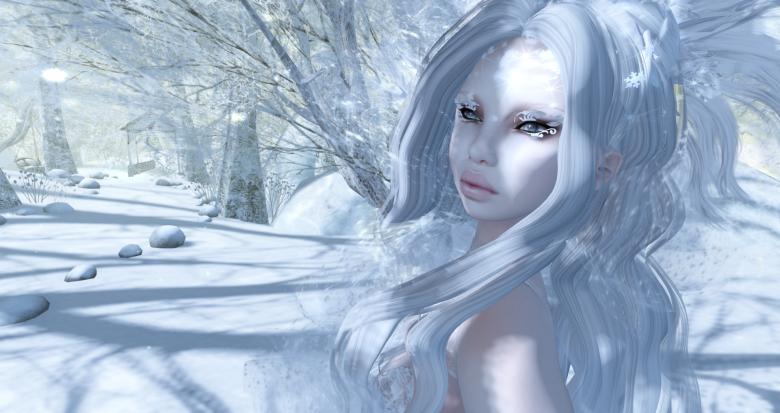 Flocon de neige02